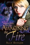 AwakeningTheFire_AllyShields_GuardianWitch1